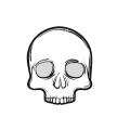Skulls & Accessories